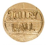 Volleyball Chenille Pin Pins
