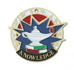 Knowledge USA Sport Medal USA Sport Series