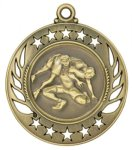Wrestling Galaxy Series Medal Wrestling Awards